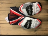SNOWLIFE  Champion Glove Men